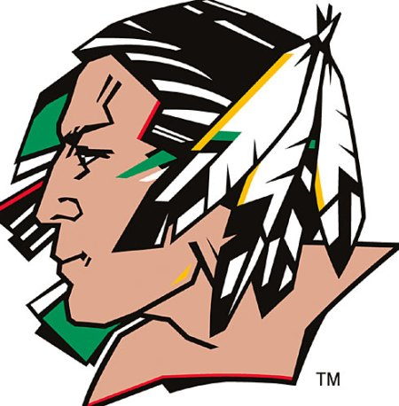 fightingsioux