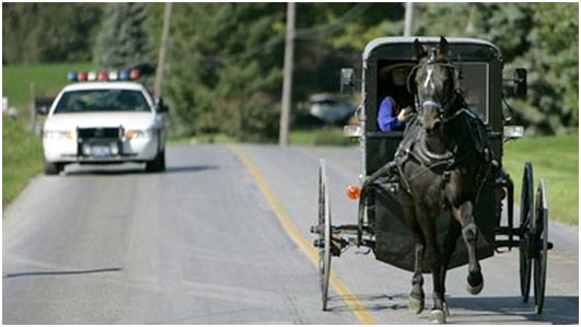 Amish teen busted for drag racing horse and buggy
